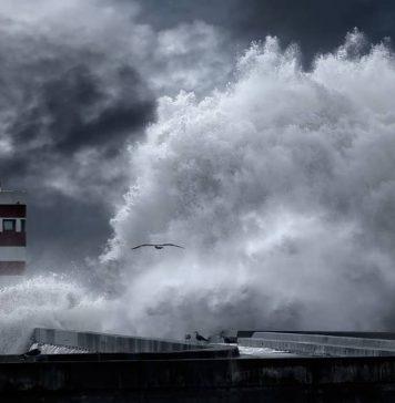 La ola más grande de todas/ ¡Hola, ola!