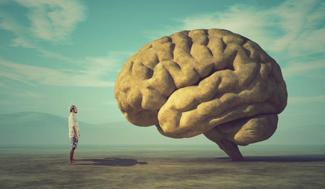 Hábitos que podrían dañar tu cerebro y que parecen buenos